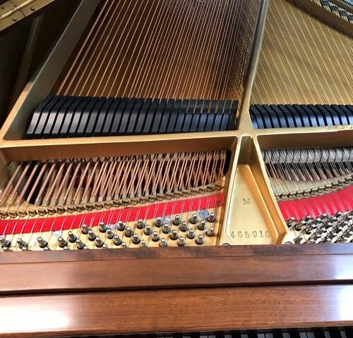 steinway-m-grand-piano-465h