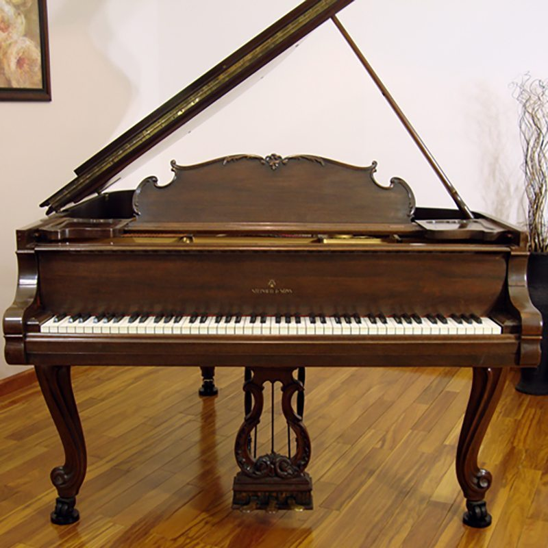 1925 Steinway Louis Xv Model L In Walnut Piano